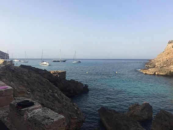 dive-with-me.de tauchen Mallorca