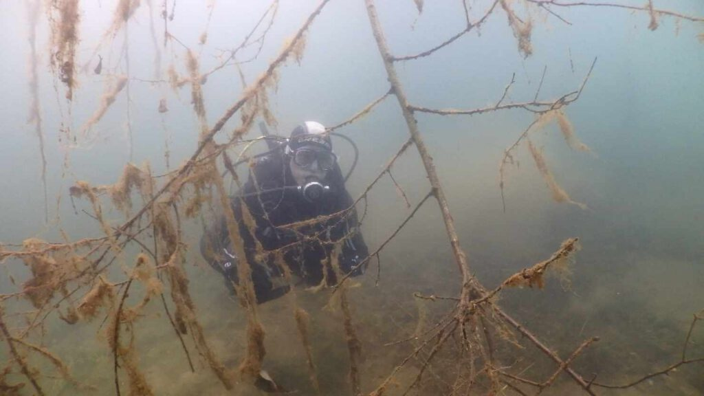 Widdauen unterwasser